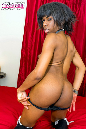 Naked Big Booty Black Tranny Ass
