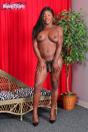 Big Tits Amateur Ebony Shemale Dick
