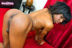 Shaved Amateur Black Tranny with Big Balls