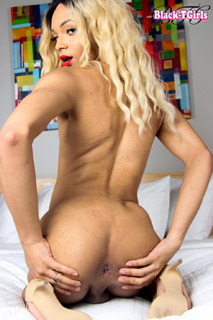 Hung TGirl Cumming in a Spread Ass
