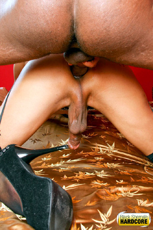 Big Ass Ebony TGirl Interracial Group Sex