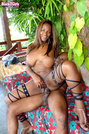 Beautiful Big Cock Black TGirl Fucking