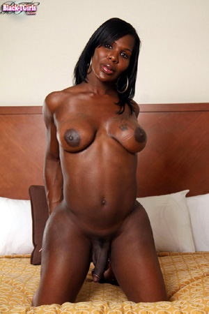 Ebony Shemale on Female Group Sex Orgy