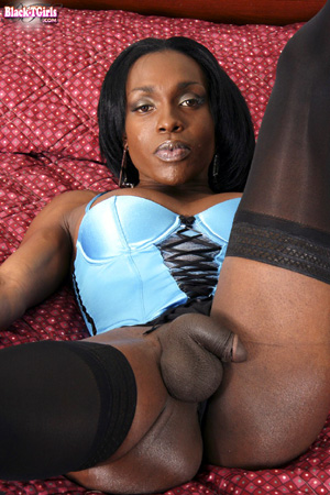 Amateur Black Tranny MILF Groped in Pantyhose