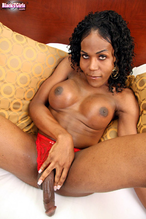 Ebony Shemale Lesbian Strap-on Anal Pegging