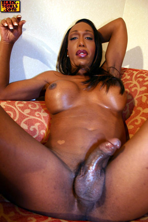 Hot Black Tranny Twerking