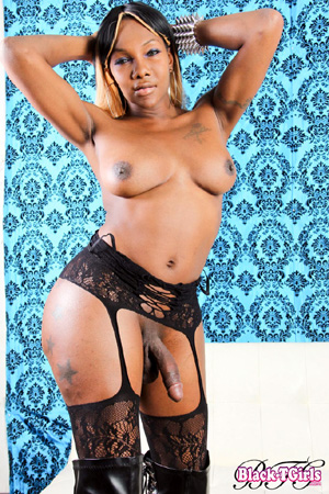 Hung Ebony Shemale Dick